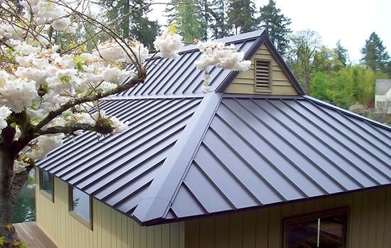 Metal Roofing - Tekline Roofing